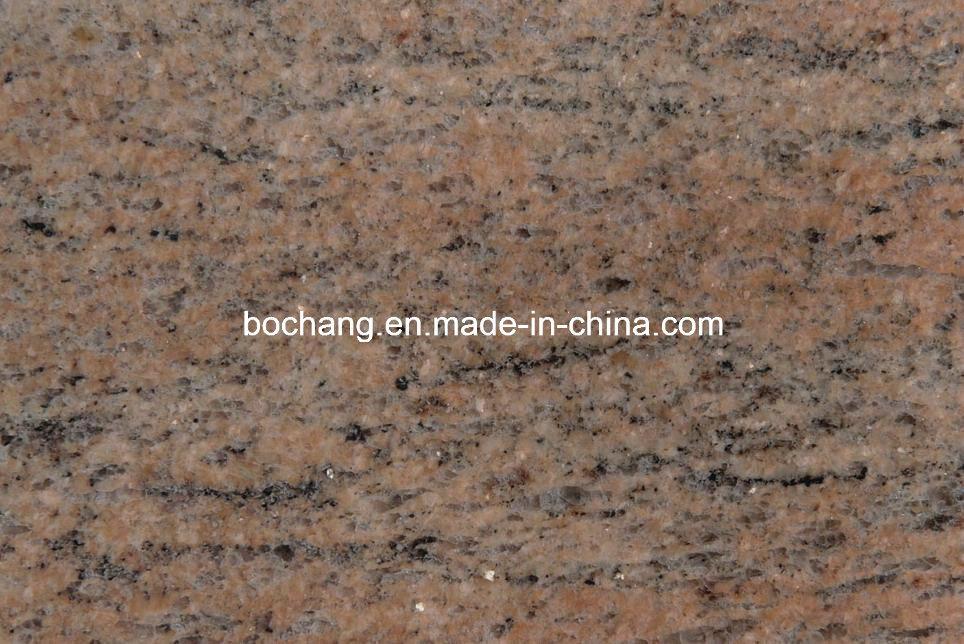 [Hot Item] Polished India Raw Silk Granite Tiles