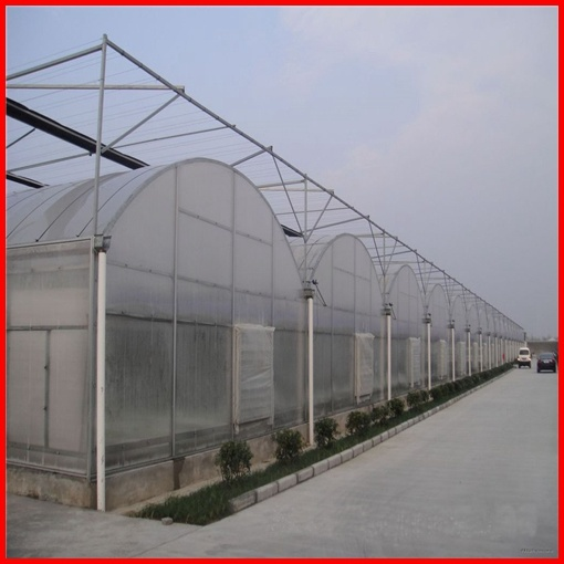 Agriculture Farm Multi-Span Plastic Film Greenhouse for Vegetables