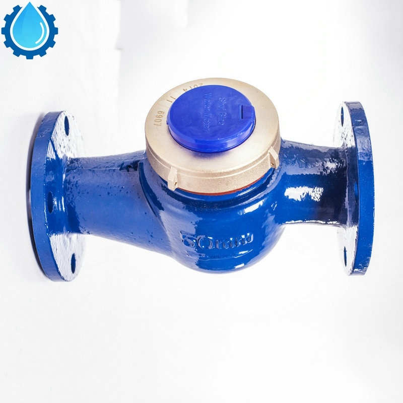 Dn15, Dn20, Dn25, Dn40, Dn50 Multi-Jet, Cast Iron Shell, Brass Cover with Connectors Cold/Hot Best -Sell Water Meter pictures & photos
