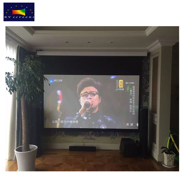 China High Quality Electric Projection Screen/Projector
