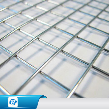 China Galvanized/ PVC Coated Welded Wire Mesh for Cage/Filter ...
