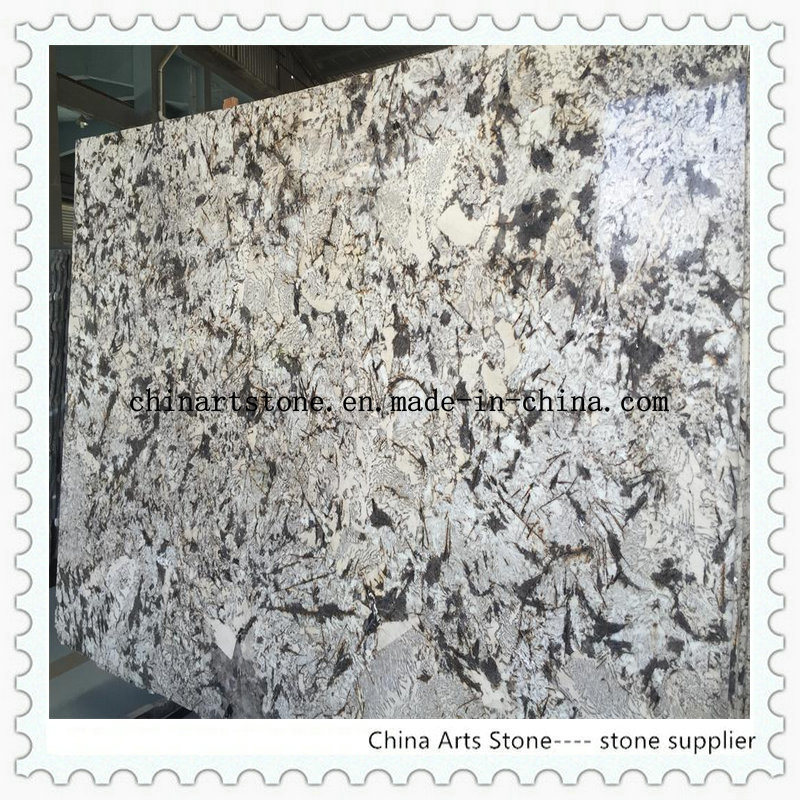 China Snow Fox Granite Slab For Countertop And Wall Tile Stone