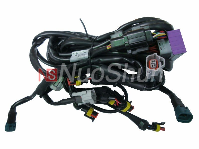 China Car Ecu Wire Harness  Wire250