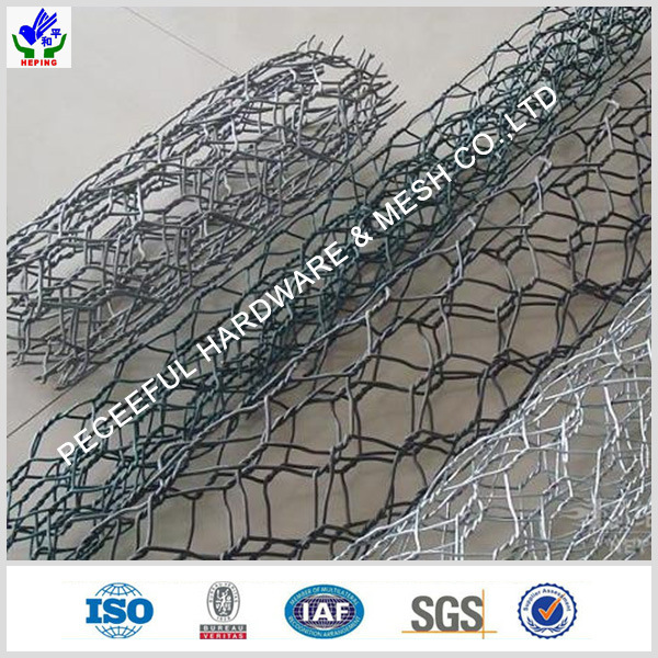 Hot Sale PVC / Galvanized Gabion Box (HPZS-1002) pictures & photos