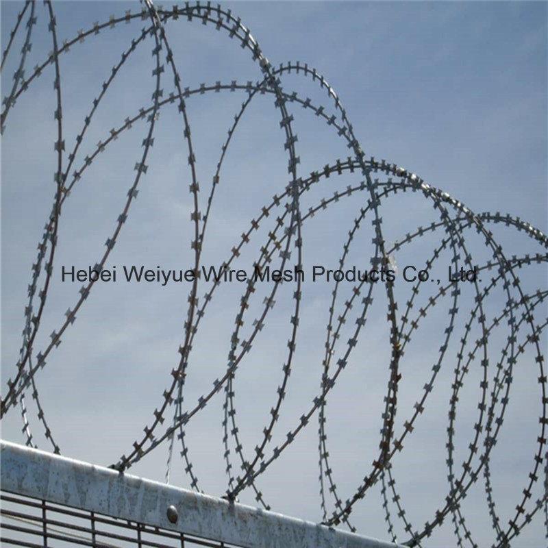 China Razor Barb Wire Fence/Concertina Razor Wire Factory Photos ...