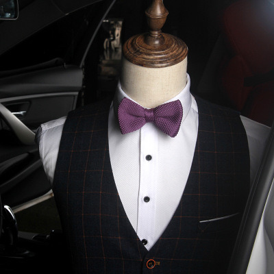 f458257f5d10 Self Tie Bow Ties, Knitted Bow Ties, Men Bow Ties. Get Latest Price
