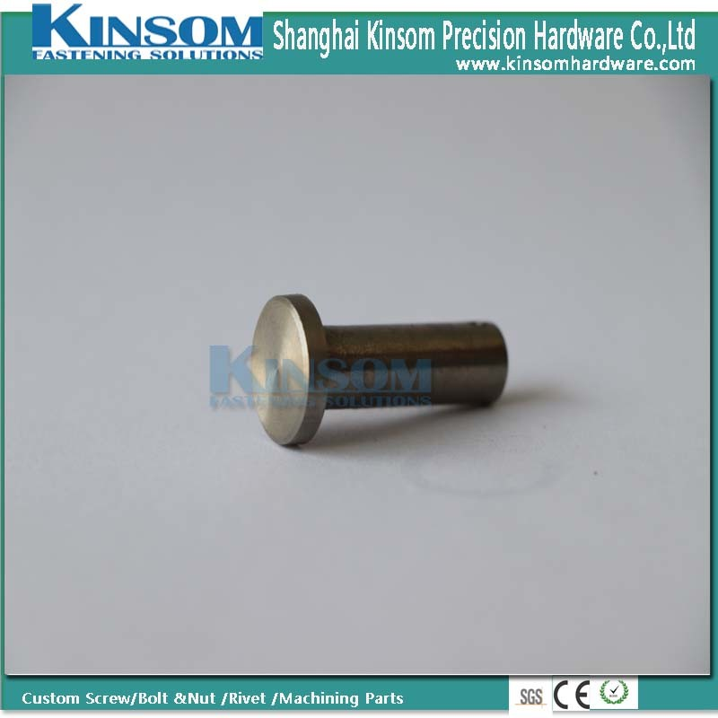 Customized Metal Fasteners Round Head Hole Pin Foundation Stud Bolt pictures & photos