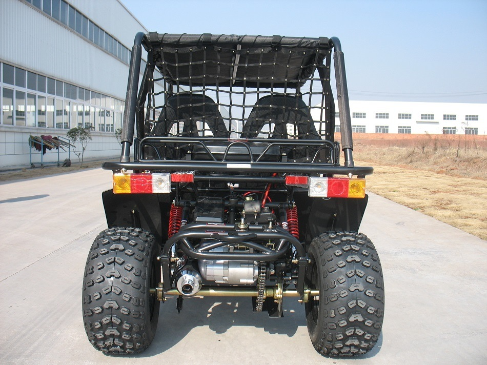4 Wheel and 2 Seat Automatic Dune Buggy (KD 200GKH-2) pictures & photos