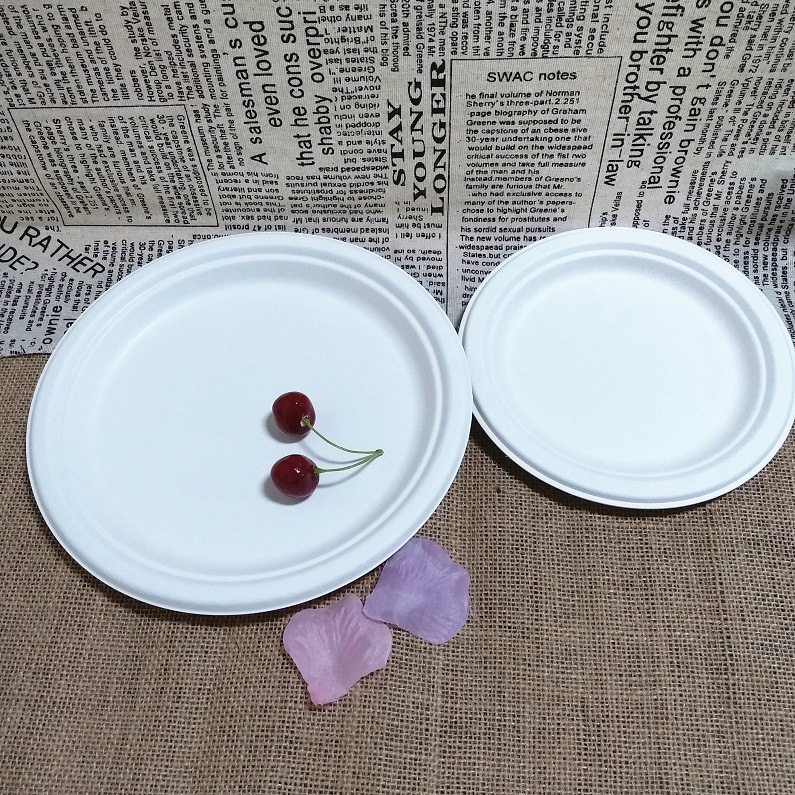Biodegradable Bagasse Dinnerware Wedding Party Disposable Charger Plate & China Biodegradable Bagasse Dinnerware Wedding Party Disposable ...