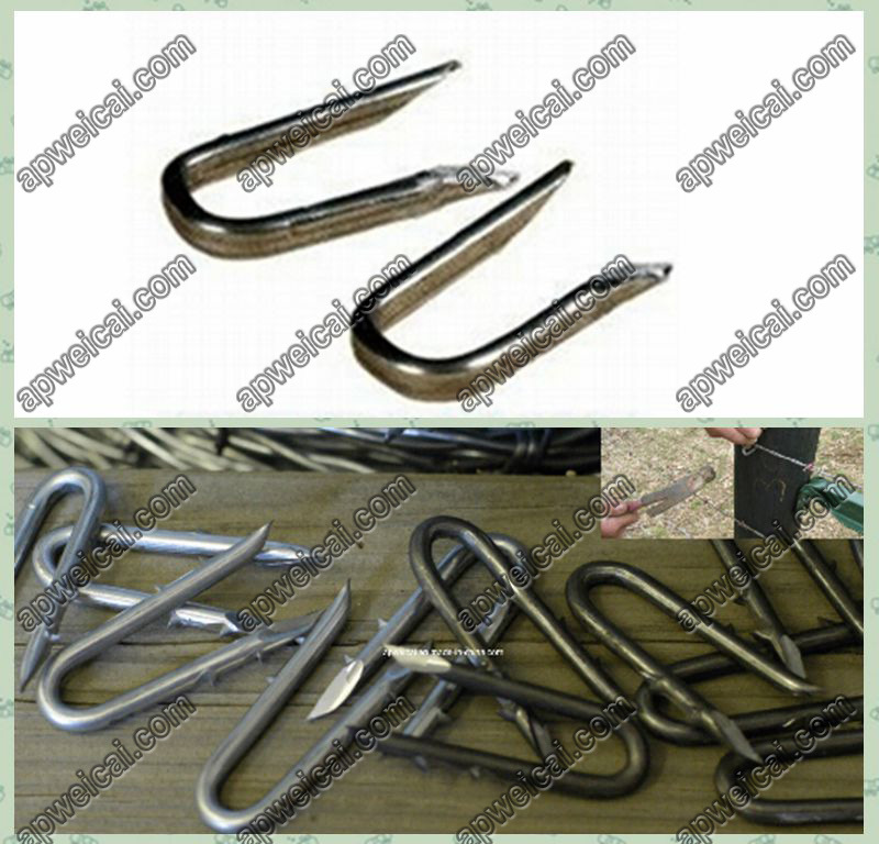 Hot Item China Supply Cheap U Type Nails For Wooden Fence