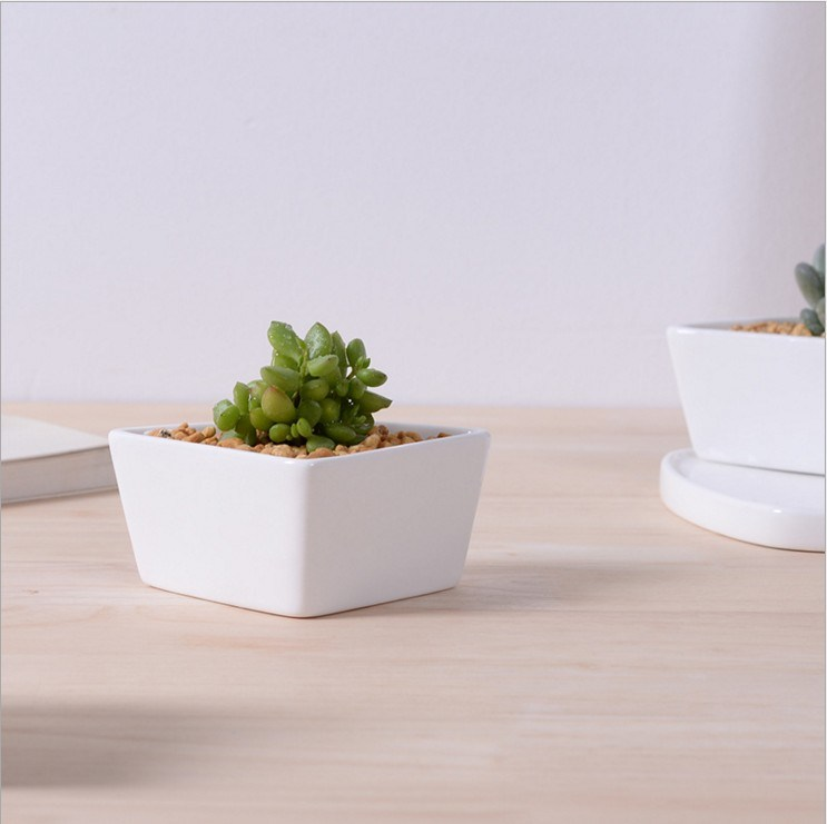 White Ceramic Flowerpot with Triangular Shaped Base Assorted Cold Dishes pictures & photos
