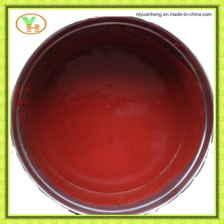 Canned Tomato Paste Canned Food Manufacturer Healthy pictures & photos