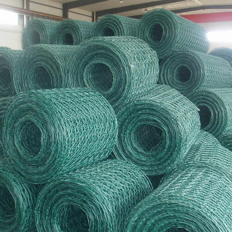 China PVC Coated Hexagonal Wire Mesh - China Mesh, Wire Mesh