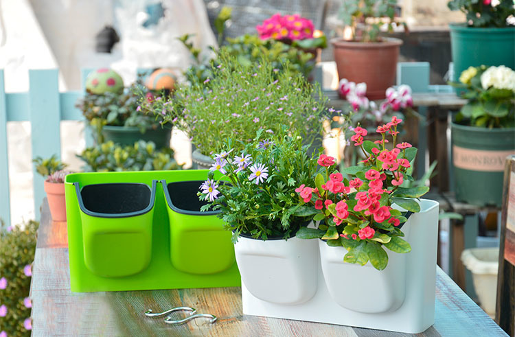 Big Size Plastic Plant Hanging Pots/Hanging Flower Pot & China Big Size Plastic Plant Hanging Pots/Hanging Flower Pot Photos ...
