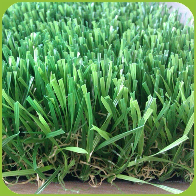 North America Popular Artificial Grass W Shape Blade Synthetic Grass pictures & photos
