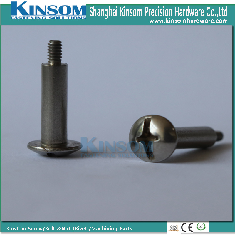 Stainless Steel 316 Bolt Phillips Pan Head Special Bolts with Polishing Plain Surface pictures & photos