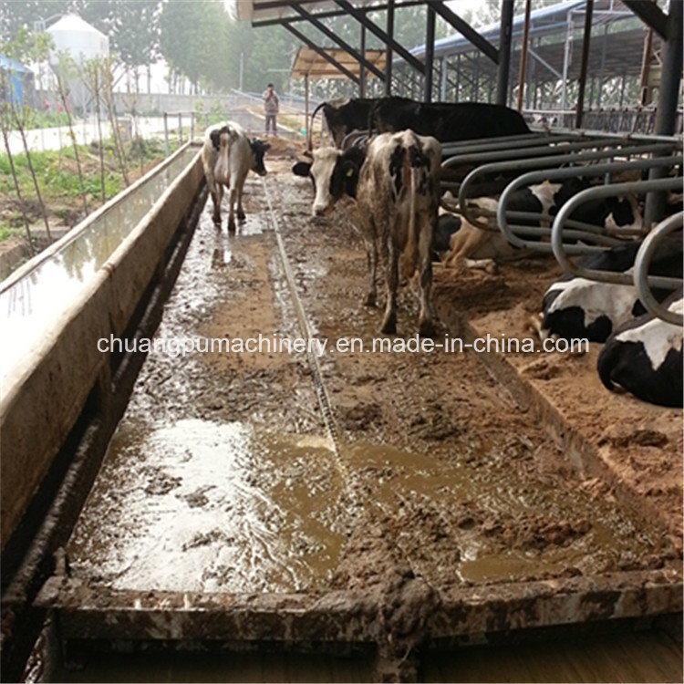 China Siemens Control System Manure Scraper For Dairy Cow