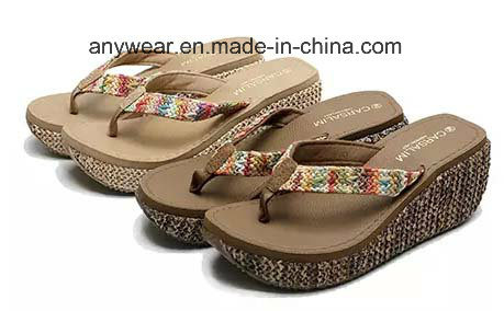 b0f7a7642 China Flip Flop Ladies Slipper Footwear Women Sandal Shoes (551 ...