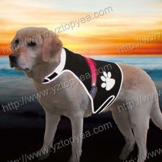China ′flash′ Security Waistcoat for Dogs, LED Dog Harness, Safety