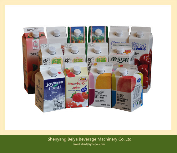 Apple Juice Carton Automatic Packing Machine (BW-2500)