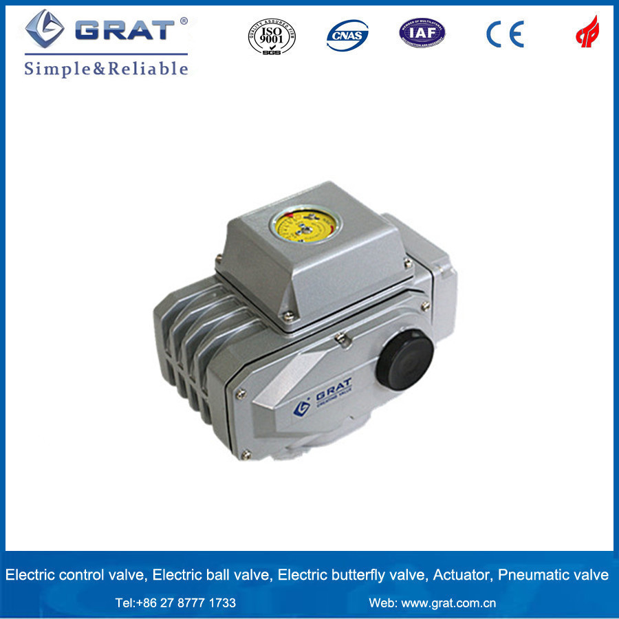 Electric Actuator pictures & photos