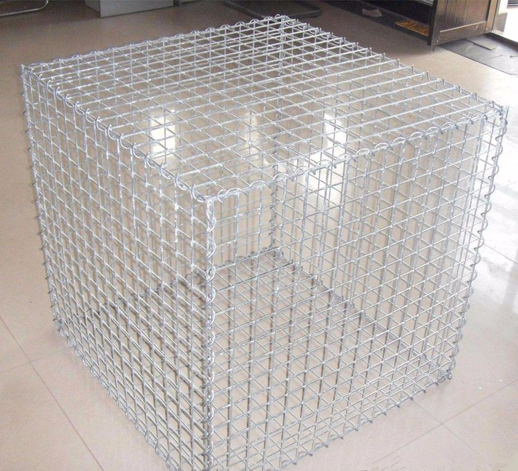 China Hexagonal Wire Mesh/Gabion Mesh Manufacturer Photos & Pictures ...