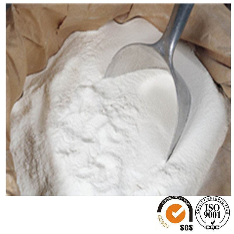 Manufacture Provide Hydroxypropyl Methyl Cellulose HPMC for Buiding Use
