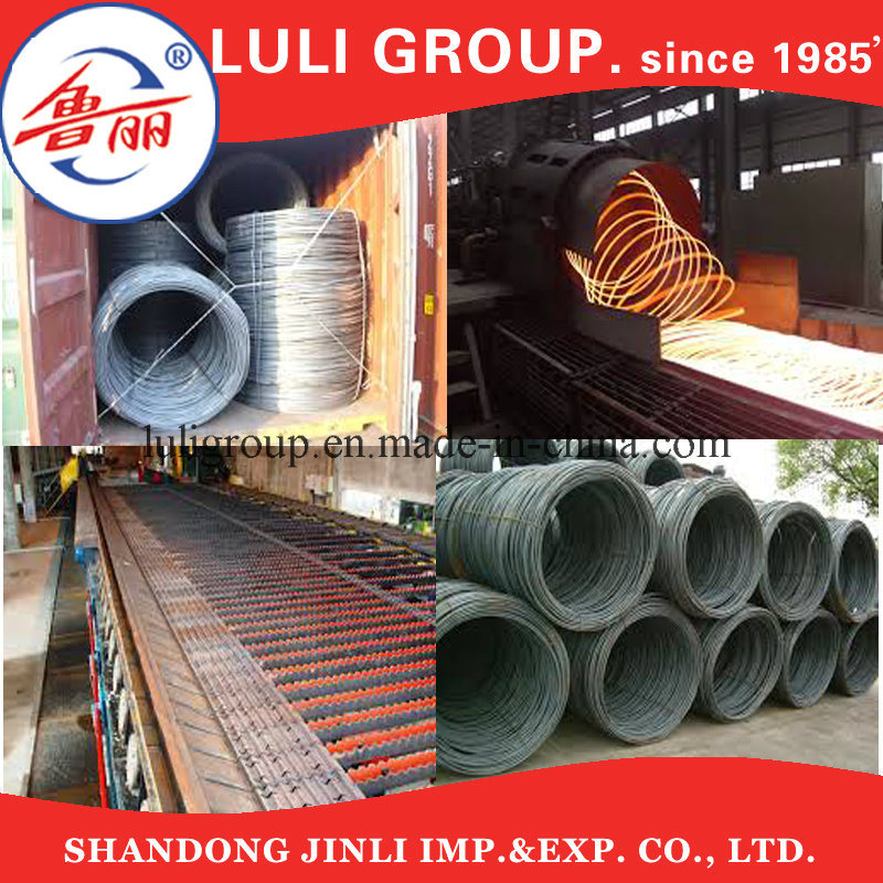 China Hot DIP Galvanized Steel Wire, Steel Wire Rod, Steel Wire for ...