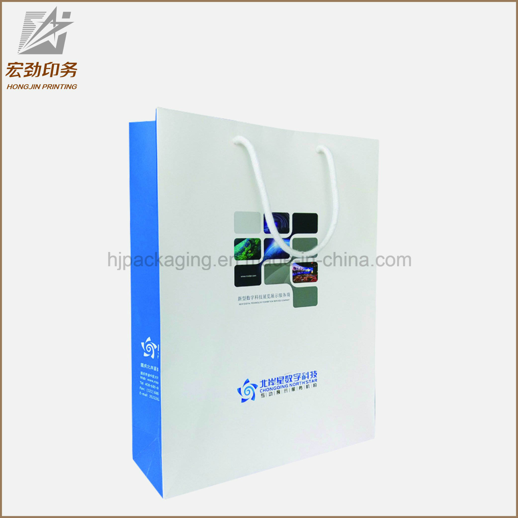 Customized Logo Silver Hot-Stamping Logo Luxury Paper Gift Bags Wholesale, Paper Bag Printing with Silk Handle pictures & photos
