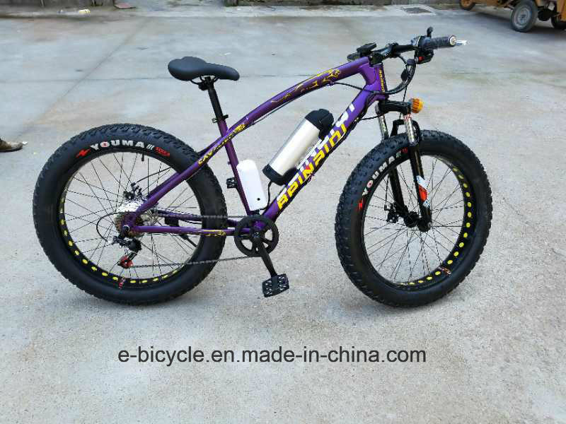 Fat Tire Lithium Battery Electric Bike Snow Beach E-Bicycle pictures & photos