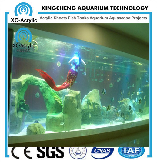Large Transparent Acrylic Sheet for Aquarium by Customized/ Thick Acrylic Sheet of Acrylic Sheet Aquarium pictures & photos