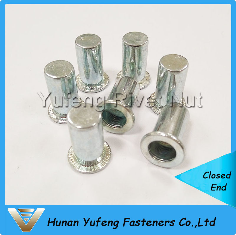 Zinc Plating Closed End Rivet Nut with Flat Head Round Body