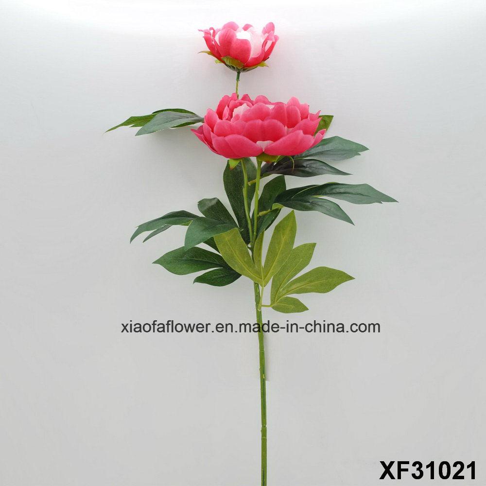 China Artificialplasticsilk Flower Single Stem Of Peony Xf31021