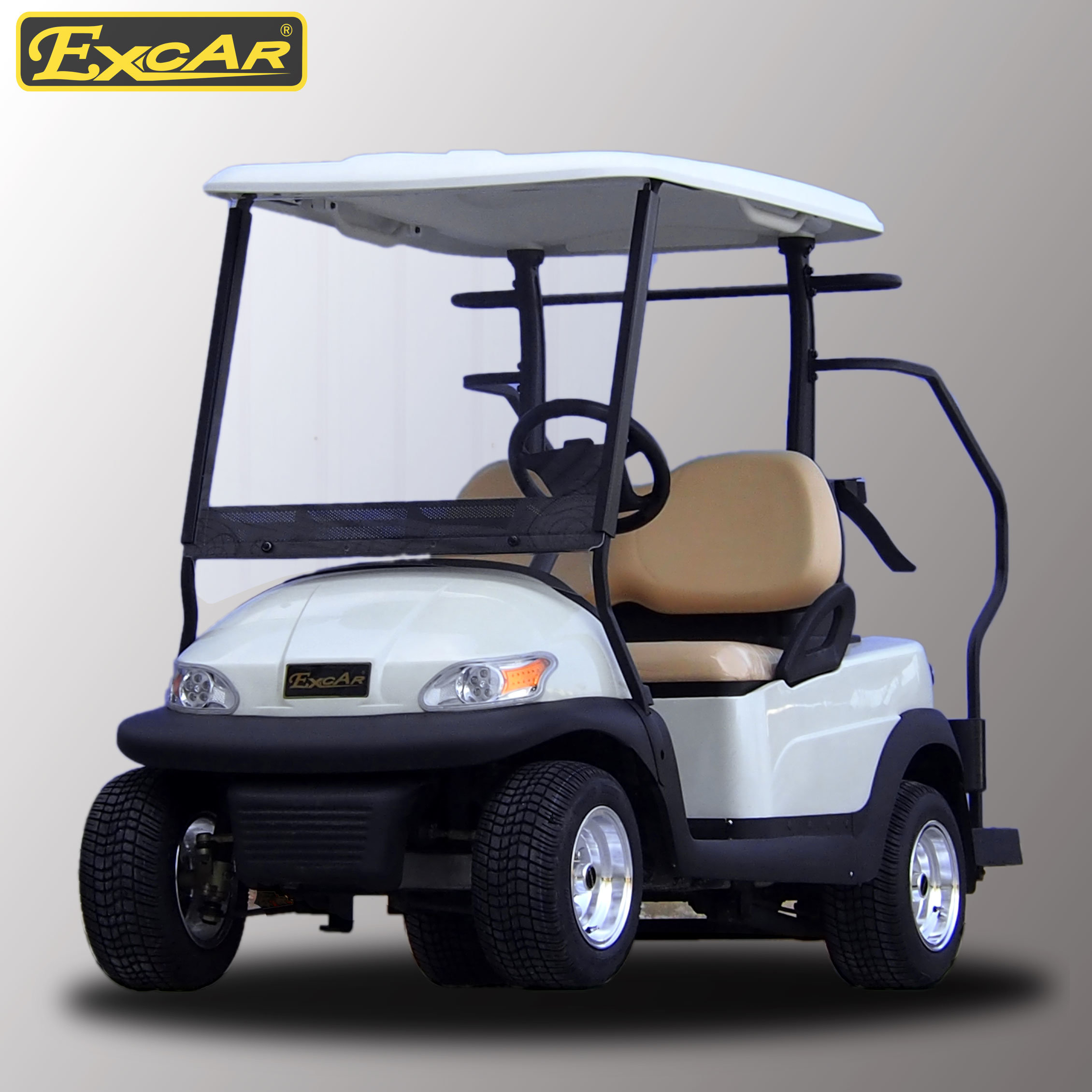 2 Seater Electric Golf Cart for Golf Course pictures & photos