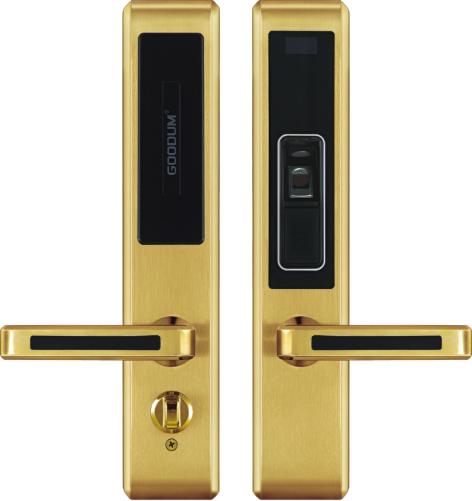 China Biometric Fingerprint Keyless Keypad Password Access Control Gold Digital Door Lock Electronic System Locks Smart