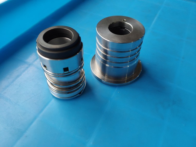 China LPG Dispenser Pump Seal, Cartridge Mechanical Seal for Gas