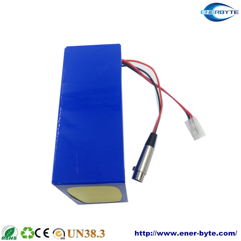 LiFePO4 Battery Pack 24V 20ah pictures & photos