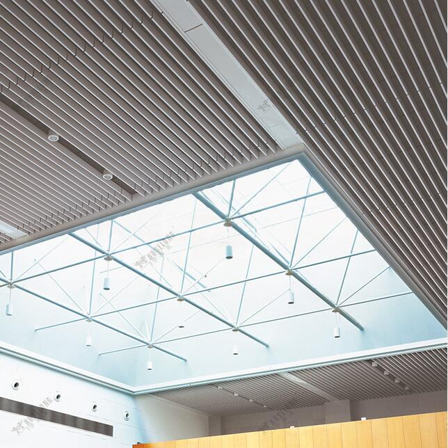 High Quality Factory Price Extrusion Screen Baffle Ceiling