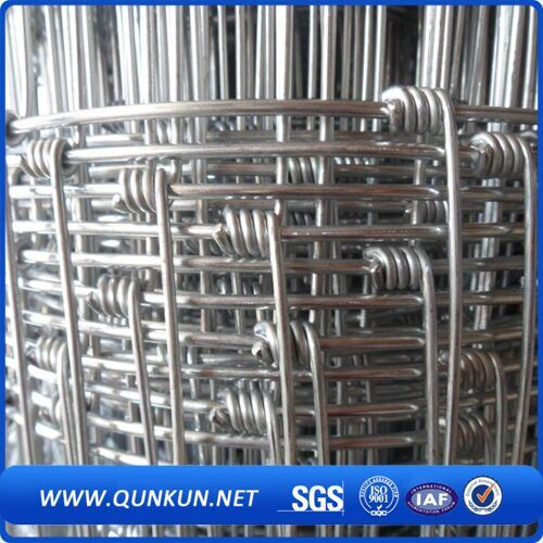 China Steel Fence/Cattle Fence Wire Mesh/PVC Coated Fence - China ...
