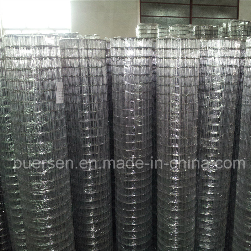 China 6X6 Concrete Reinforcing Welded Wire Mesh - China Welded Mesh ...