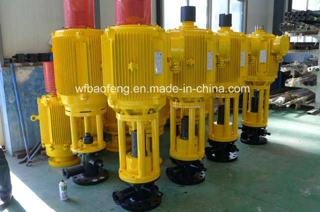 Petroleum Progressive Cavity Pump Screw Pump PC Pump Ground Driving Device pictures & photos