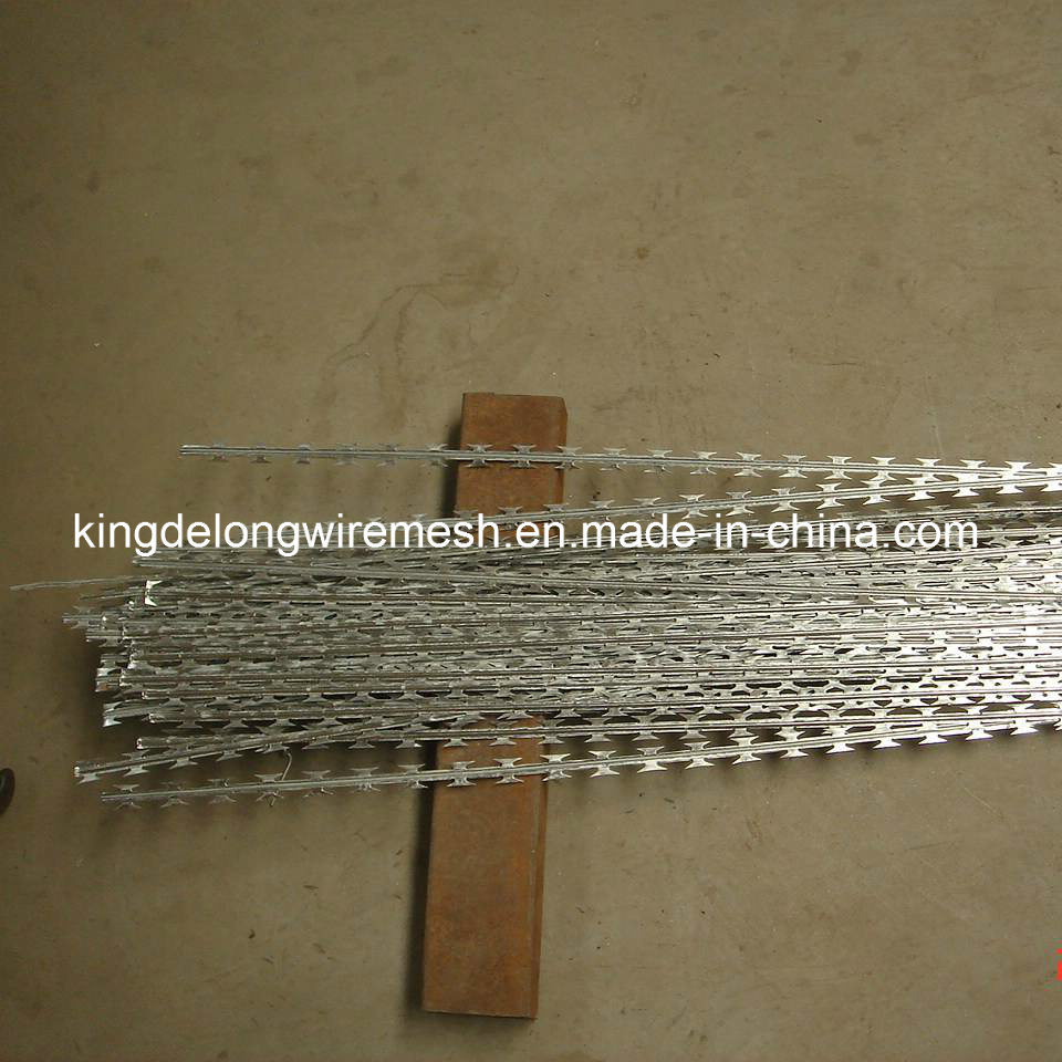 High Tensile Strength Galvanized Razor Barbed Wire (KDL-23)