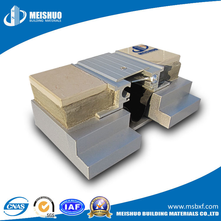 China 50mm Expansion Joint Systems In