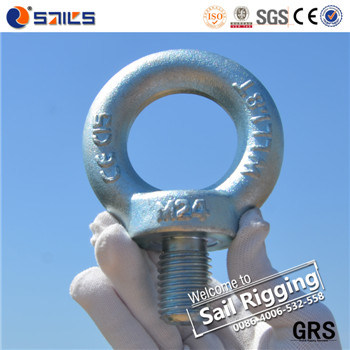 High Strength Carbon Steel Drop Forged Galvanized Lifting Eye Bolt DIN580 pictures & photos