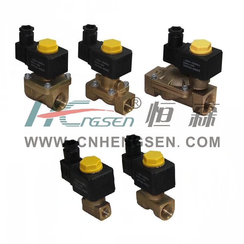 Professional OEM Manufacturer of Solenoid Valve (water, air, oil)