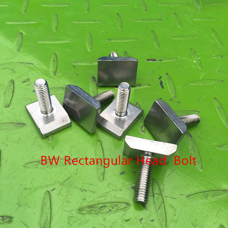 Stainless Steel Rectangular Head Bolt pictures & photos