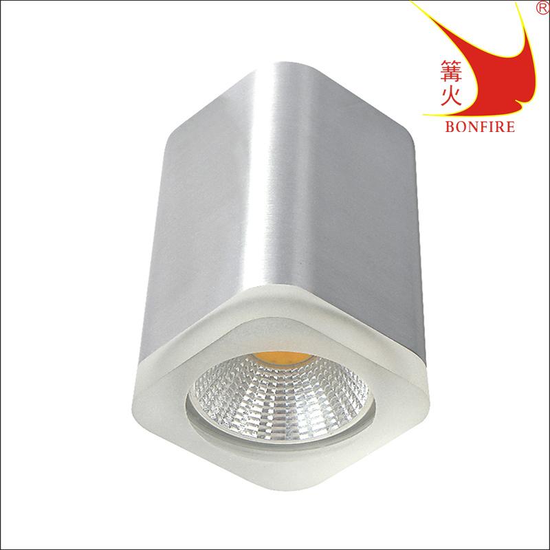 Waterproof Ceiling Light Ce Ul