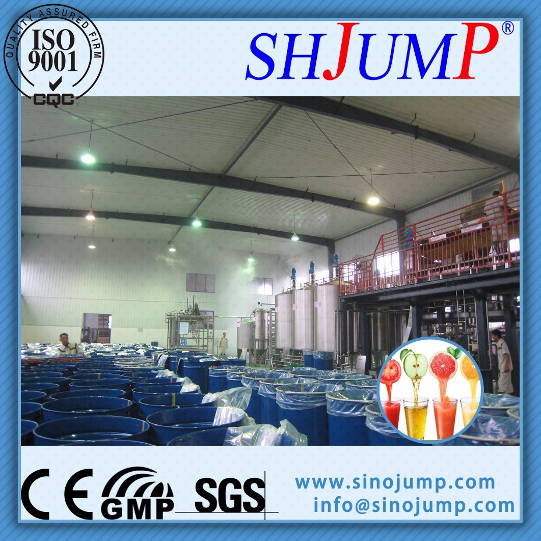 Fully Automatic Fruit Juice Processing Line/Equipment