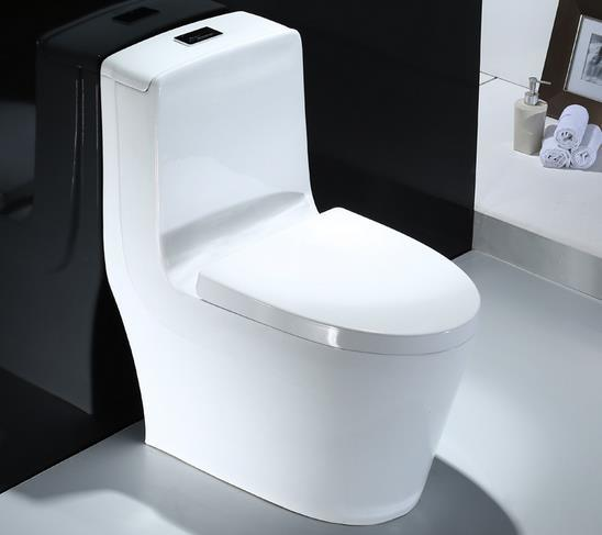 Super Hot Item Mexico Malaysia S Trap One Piece Floor Stand Toilet Seat Machost Co Dining Chair Design Ideas Machostcouk