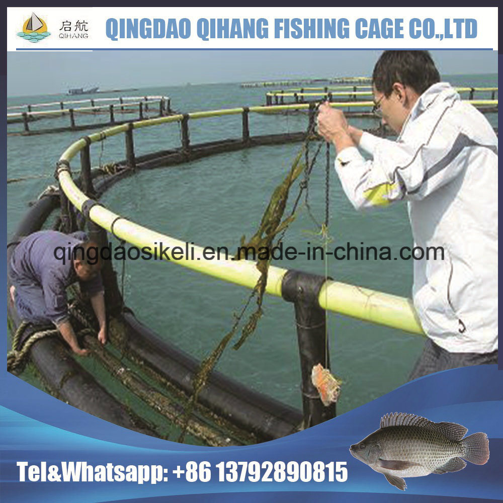 Floating Pontoon - Qingdao Qihang Fishing Cage Co , Ltd
